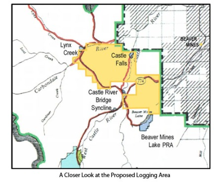 Close Up of Proposed Logging Area